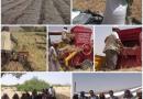 المؤسسة تدشن موسم حصاد القمح واختتام مشروع الحقول الايضاحية في محافظة الجوف