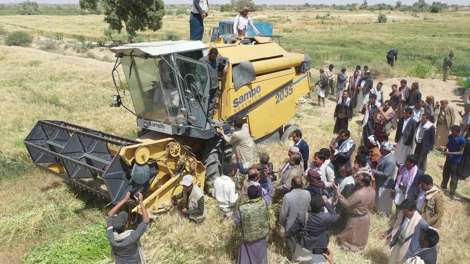 التدشين الحصاد (18)